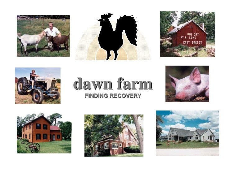 dawn farm FINDING RECOVERY