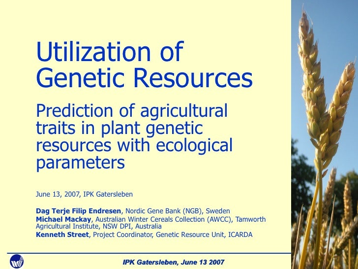 Cover slide Utilization of Genetic Resources Prediction of agricultural traits in plant genetic resources with ecological ...