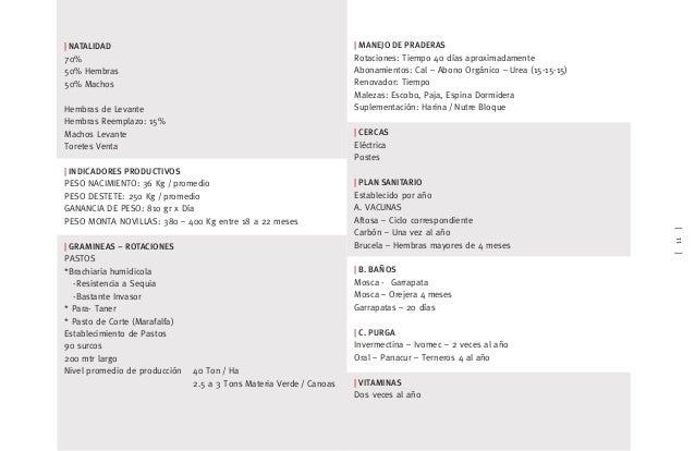 [11]   NATALIDAD 70% 50% Hembras 50% Machos Hembras de Levante Hembras Reemplazo: 15% Machos Levante Toretes Venta   INDIC...