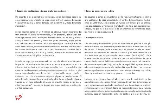   Descripción zootécnica de la raza criolla Sanmartinero. De acuerdo a los parámetros zootécnicos, se ha clasificado según...