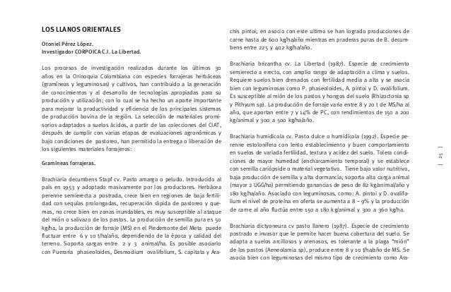 chis pintoi, S. capitata y Desmodium ovalifolium, es la única gramínea forrajera que tiene una producción comercial de sem...