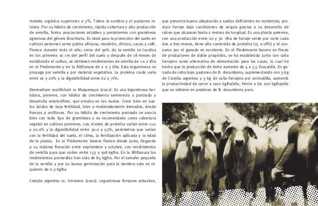 [29]   LOS FORRAJES COMO FUENTE DE ALIMENTACIÓN EN LOS SISTEMAS DE PRODUCCIÓN DE GANADO BOVINO EN LA ORINOQUIA COLOMBIANA ...