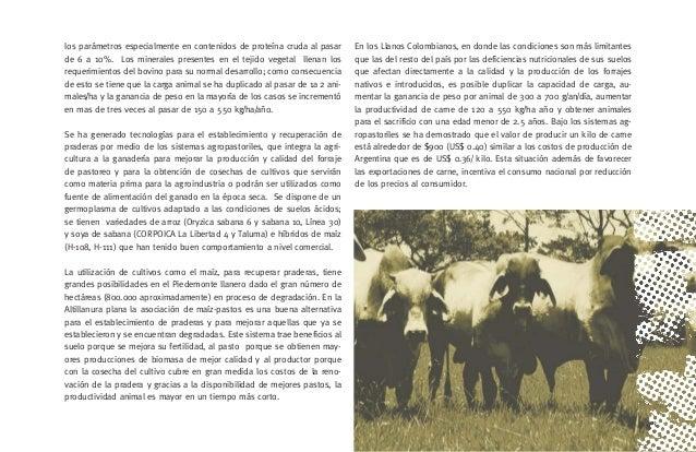 [33] .CONFERENCIAS TÉCNICAS 1.1.CONFERENCIA: Modelo de desarrollo agropecuario para el Departamento del Meta. Dr. Jaime Tr...