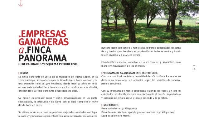 [9] .EMPRESAS GANADERAS a.FINCA PANORAMAGENERALIDADES Y ESQUEMA PRODUCTIVO.   RESEÑA La Fínca Panorama se ubica en el muni...