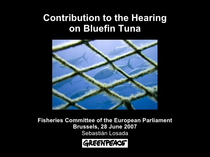 Contribution to the Hearing       on Bluefin Tuna     Fisheries Committee of the European Parliament             Brussels,...