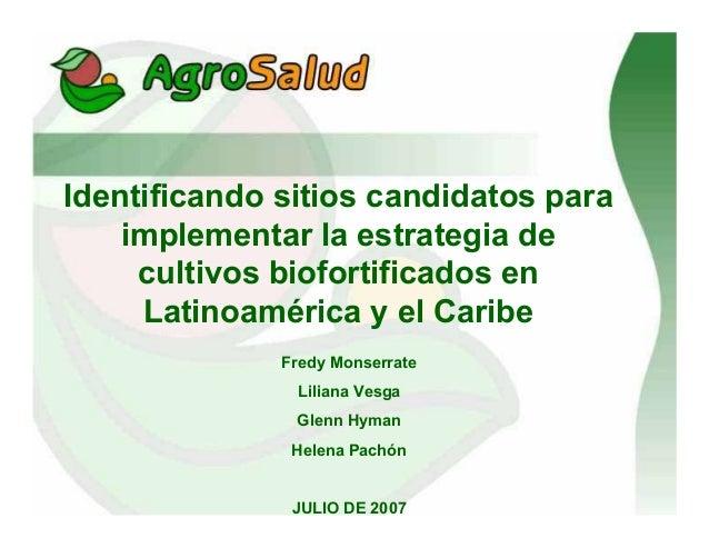 Identificando sitios candidatos para implementar la estrategia de cultivos biofortificados en Latinoamérica y el Caribe Fr...