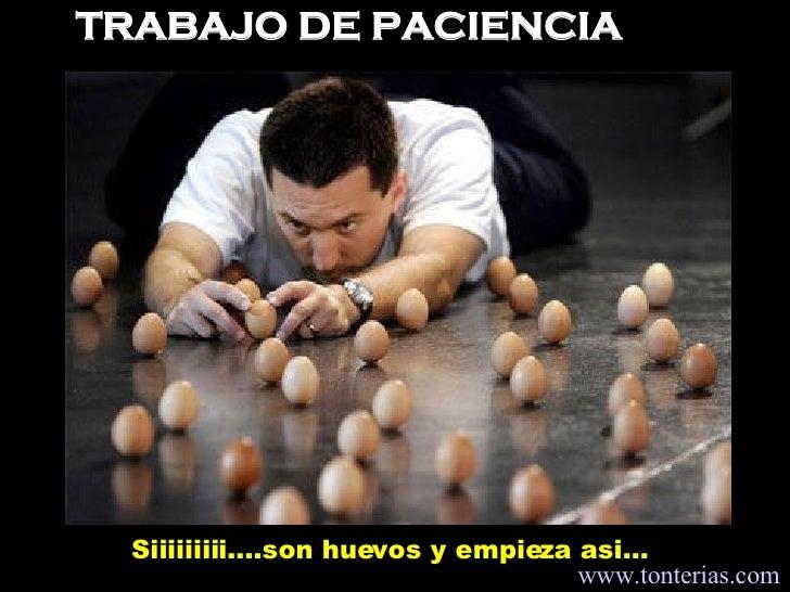 TRABAJO DE PACIENCIA Siiiiiiiii....son huevos y empieza asi...  www.tonterias.com