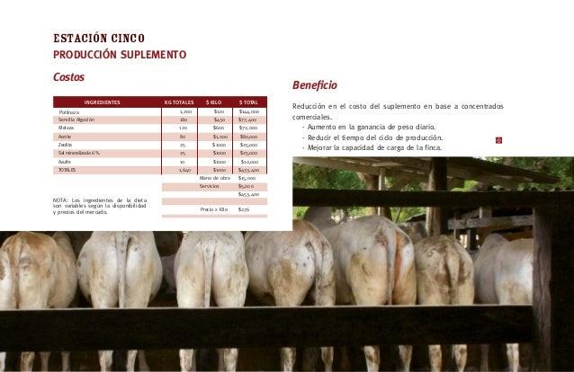 [19] ESTACIONTRES ·PROGRAMA SUPLEMENTACION Pollinaza compostada 4,0 kg. / Vaca / día El proceso consiste en vaciar la poll...