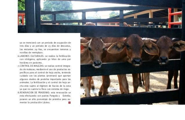 Ventajas Suplementación Aumento de la ganancia diaria de peso- Mansedumbre del ganado- Aumento en la capacidad de carga de...