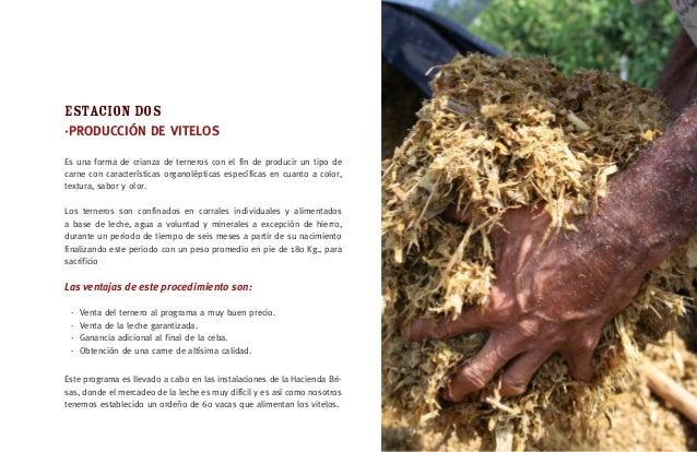 CONFERENCIAS Títulos - Zootecnista, Universidad Nacional de Colombia – Palmira 1987. Magíster en Medio Ambiente y Desarrol...