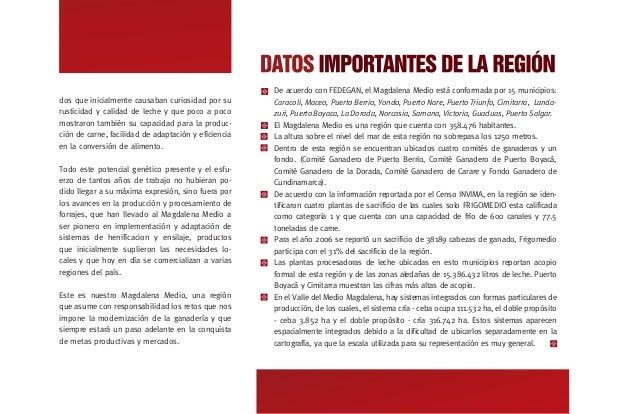 CARACTERIZACIÓN SECTOR GANADERO ESTRUCTURA DE SISTEMAS DE PRODUCCIÓN GANADEROS El 81.4% del Inventario corresponde a predi...