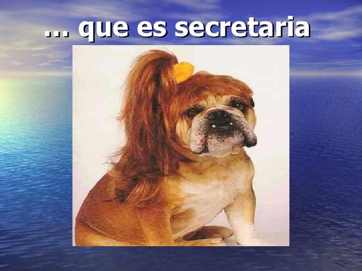 …  que es secretaria