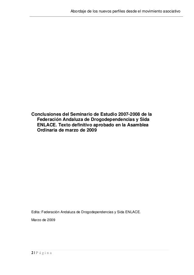 2   P á g i n a Abordaje de los nuevos perfiles desde el movimiento asociativo Conclusiones del Seminario de Estudio 2007-...