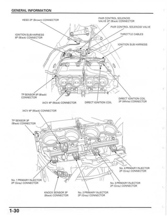 Honda Ridgeline Tail Light Wiring Diagram