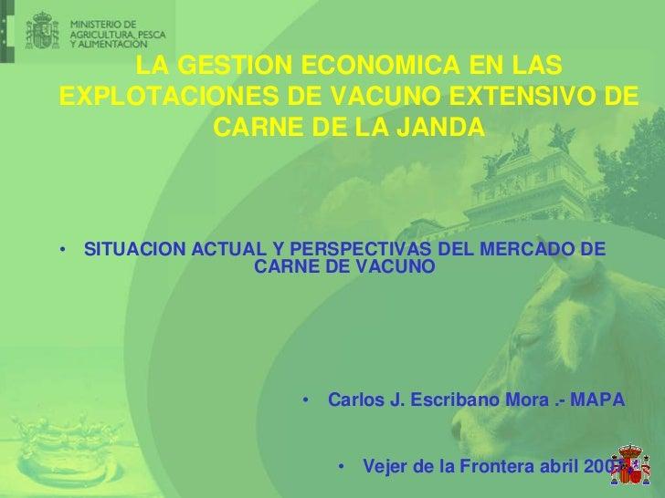 LA GESTION ECONOMICA EN LASEXPLOTACIONES DE VACUNO EXTENSIVO DE         CARNE DE LA JANDA• SITUACION ACTUAL Y PERSPECTIVAS...