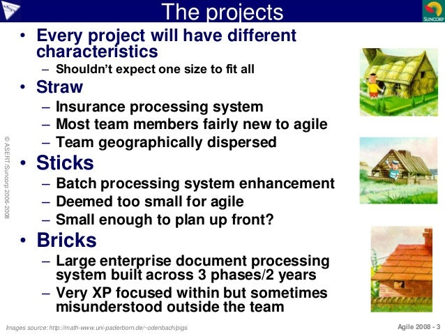 Agile Project Experiences - The Story of Three Little Pigs Slide 3