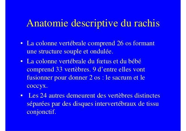 Anatomie descriptive du rachis• La colonne vertébrale comprend 26 os formant  une structure souple et ondulée.• La colonne...