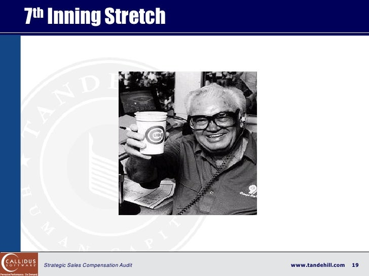 7 th Inning Stretch       Strategic Sales Compensation Audit   www.tandehill.com   19