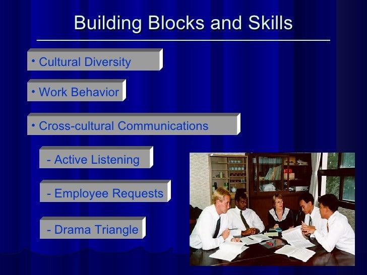 Building Blocks and Skills <ul><li>Work Behavior </li></ul><ul><li>Cultural Diversity </li></ul><ul><li>Cross-cultural Com...