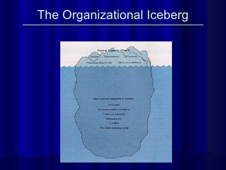 The Organizational Iceberg