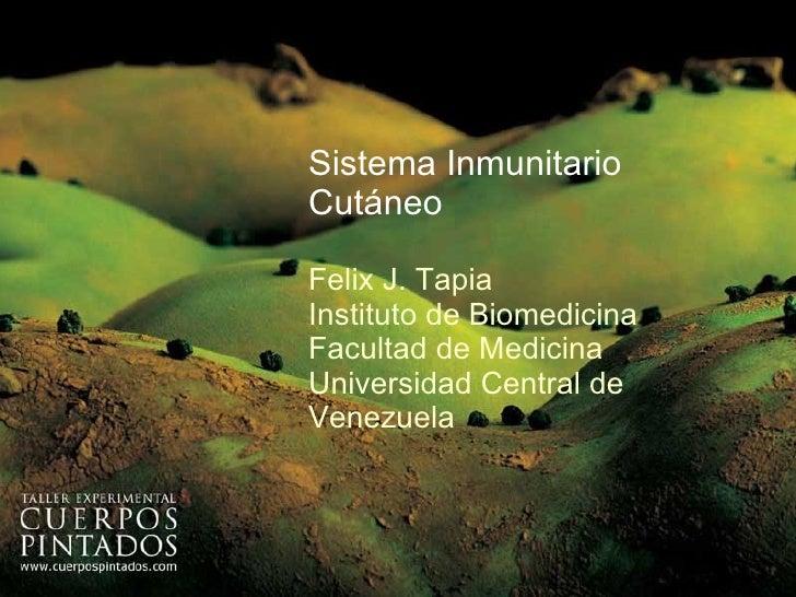Sistema Inmunitario Cutáneo Felix J. Tapia Instituto de Biomedicina Facultad de Medicina Universidad Central de Venezuela