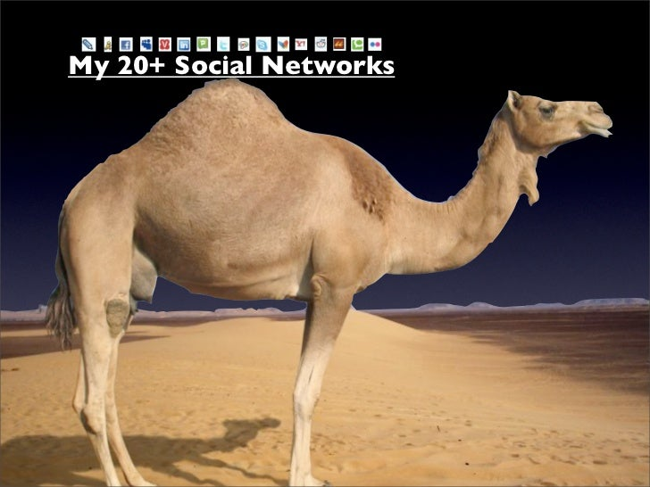 My 20+ Social Networks