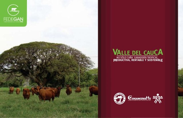 Iniciamos en el Valle del Cauca una nue- va Gira Técnica Nacional, la octava de esta serie de novedosos ejercicios de apre...