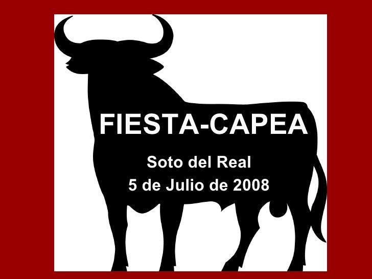 FIESTA-CAPEA Soto del Real 5 de Julio de 2008