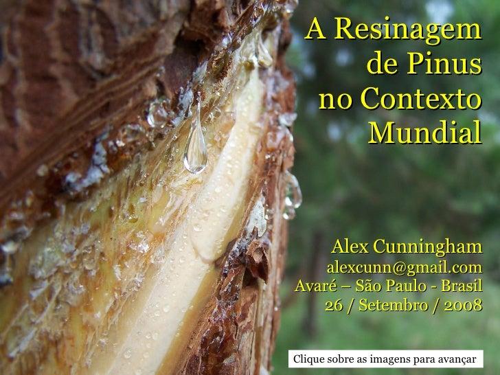 A Resinagem de Pinus no Contexto Mundial Alex Cunningham [email_address] Avaré – São Paulo - Brasil 26 / Setembro / 2008 C...