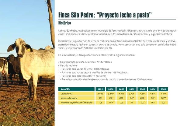 [26] Cada año se llevan a cabo análisis bromatológicos del forraje. Los resultados se expresan en materia seca, la especie...