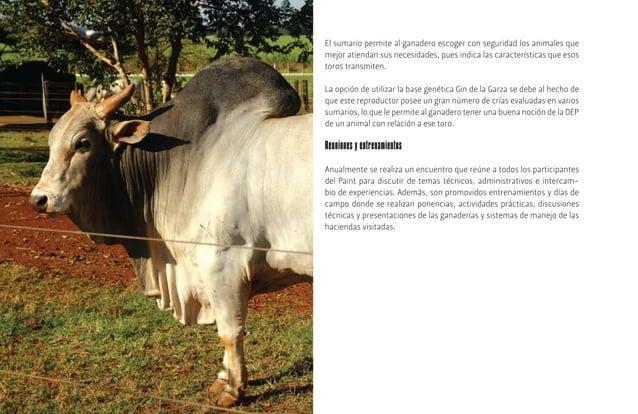 [34] ReproductivosLa finca Boa Esperança trabaja exclusivamente con ganadería de carne bovina, donde todos los animales so...
