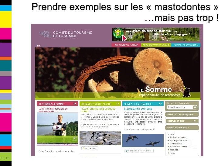 Prendre exemples sur les «mastodontes» …mais pas trop !