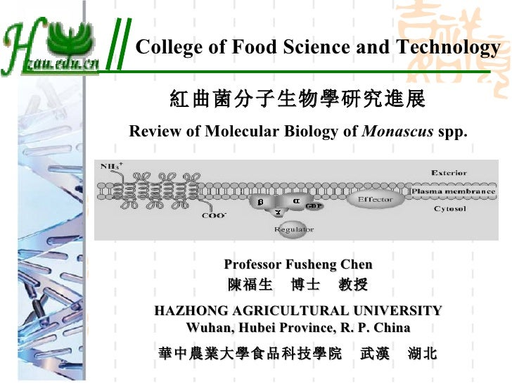 College of Food Science and Technology 紅曲菌分子生物學研究進展 Review of Molecular Biology of  Monascus  spp. Professor Fusheng Chen ...