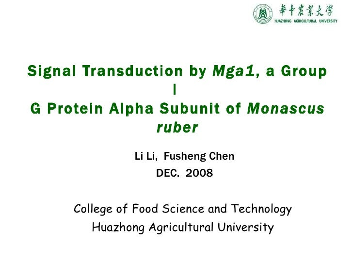 Li Li,  Fusheng  Chen DEC.  2008 College of Food Science and Technology  Huazhong Agricultural University  Signal Transduc...
