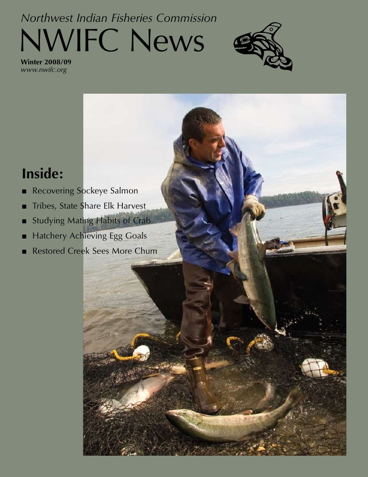 Northwest Indian Fisheries Commission  NWIFC News Winter 2008/09 www.nwifc.org     Inside: ■ Recovering Sockeye Salmon ■ T...