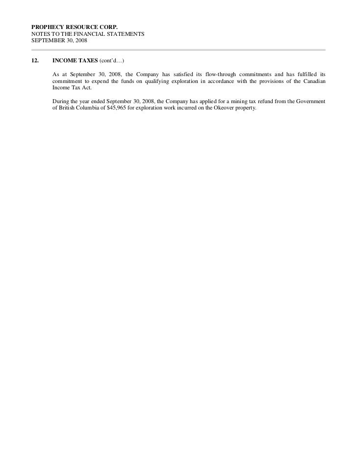 2008 annual audited financial statements