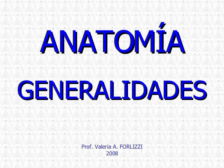 ANATOMÍA GENERALIDADES Prof. Valeria A. FORLIZZI 2008