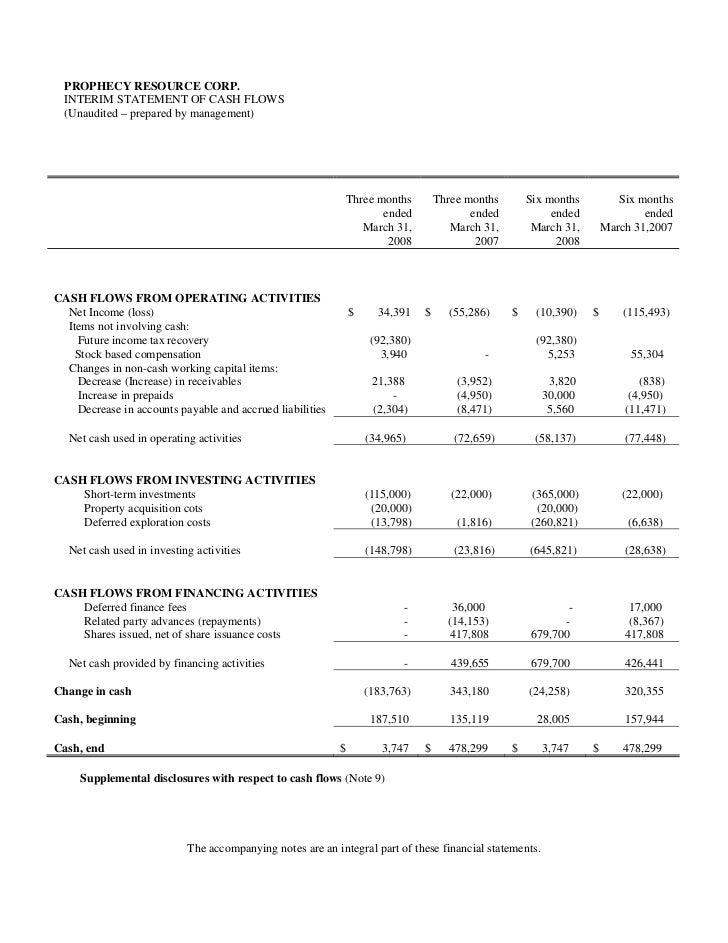 interim financial statement template