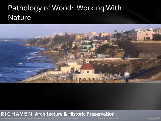 2007 Association for PreservationTechnology International Conference San Juan, Puerto Rico Pathology of Wood: WorkingWith ...