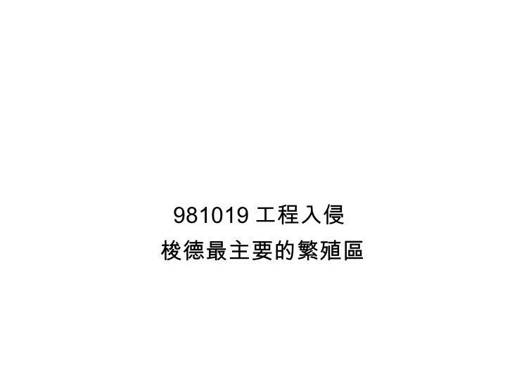 981019 工程入侵  梭德最主要的繁殖區