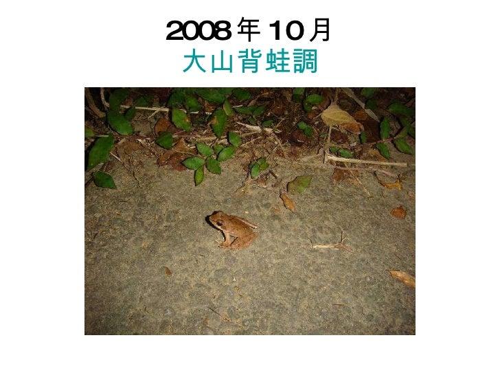 2008 年 10 月 大山背蛙調