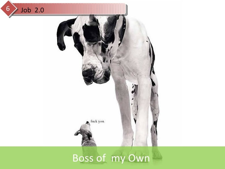 Boss of  my Own  Job  2.0 6