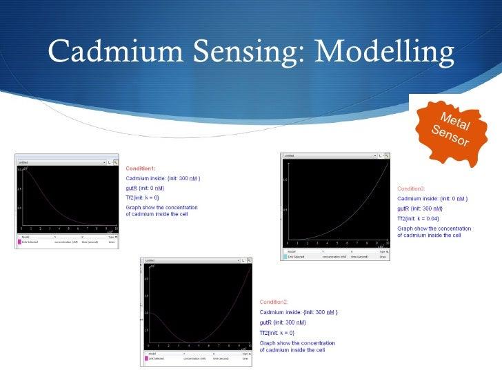 Cadmium Sensing: Modelling Metal  Sensor