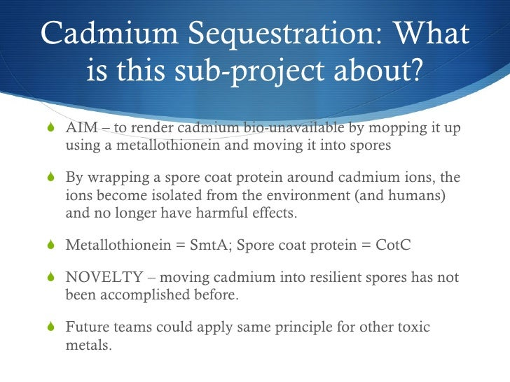 <ul><li>AIM – to render cadmium bio-unavailable by mopping it up using a metallothionein and moving it into spores </li></...