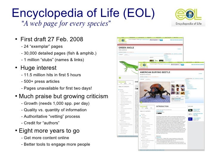 essay of encyclopaedia Essayist essay (fr essai, late lat exagium, a weighing or balance exigere, to examine the term in general meaning any trial or effort) as a form of literature.