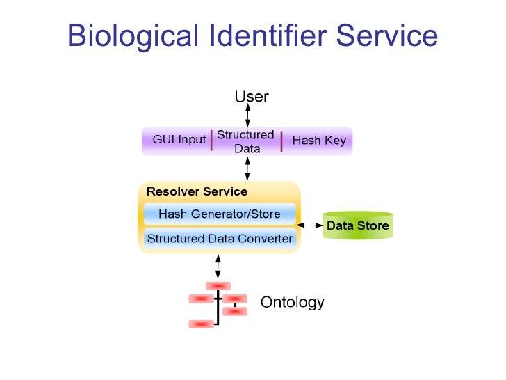 Biological Identifier Service
