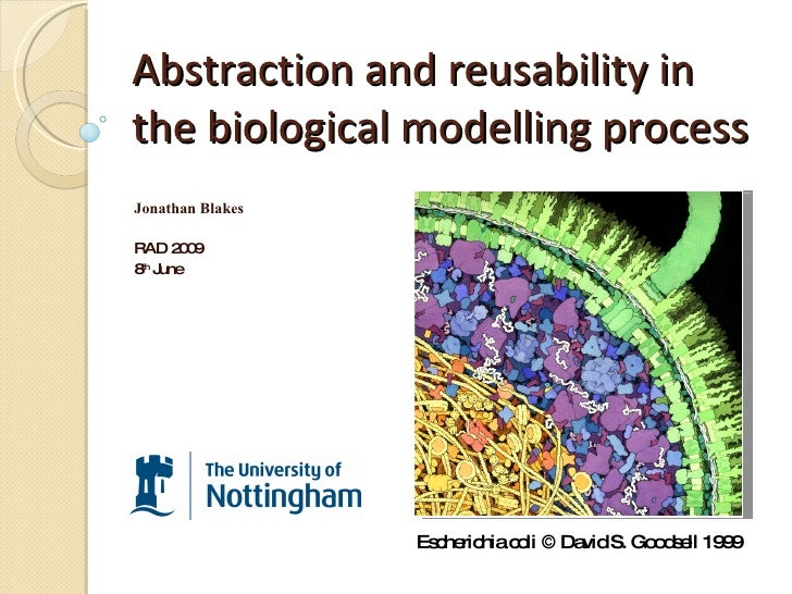 Abstraction and reusability in the biological modelling process Jonathan Blakes RAD 2009 8 th  June Escherichia coli © Dav...