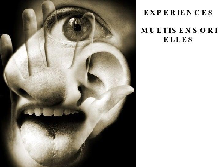 EXPERIENCES MULTISENSORIELLES