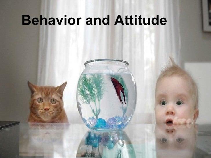 Behavior and Attitude