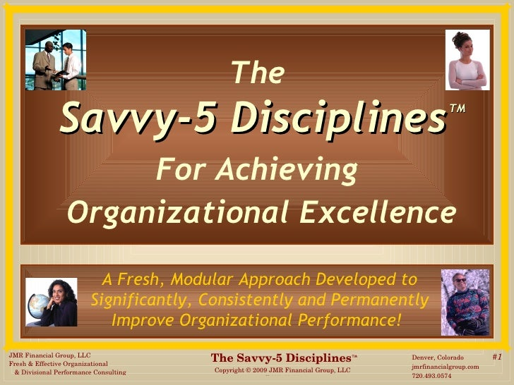 The   Savvy-5 Disciplines   TM For Achieving  Organizational Excellence A Fresh, Modular Approach Developed to  Significan...